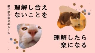 猫に学ぶ幸せのルール